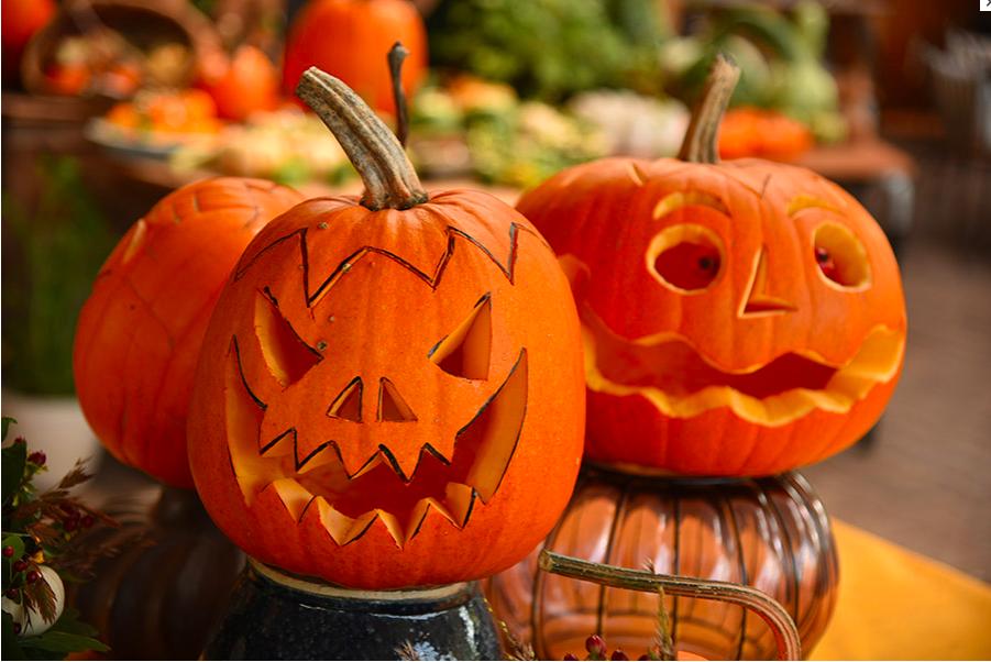 Halloween pompoen snijden | Aaldering de Stek